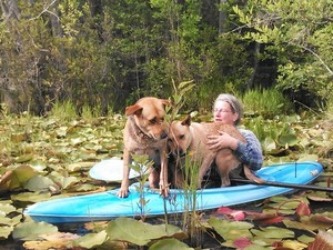 300x225 What could possibly go wrong?, in Two dogs in a small kayak, by John S. Quarterman, for Okra Paradise Farms, 29 May 2014