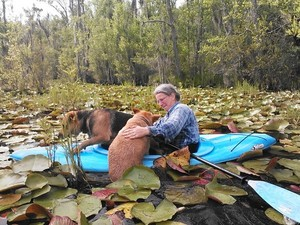 300x225 Gretchen helped her in., in Two dogs in a small kayak, by John S. Quarterman, for Okra Paradise Farms, 29 May 2014