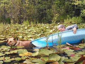 300x225 Righting the boat, in Two dogs in a small kayak, by John S. Quarterman, for Okra Paradise Farms, 29 May 2014