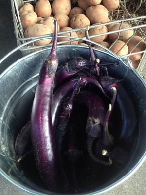 300x400 Eggplant and potatoes, in At the market, by Gretchen Quarterman, for OkraParadiseFarms.com, 27 June 2015