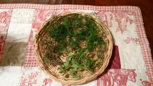 Herbs on a table