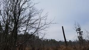 Sky, Between dams