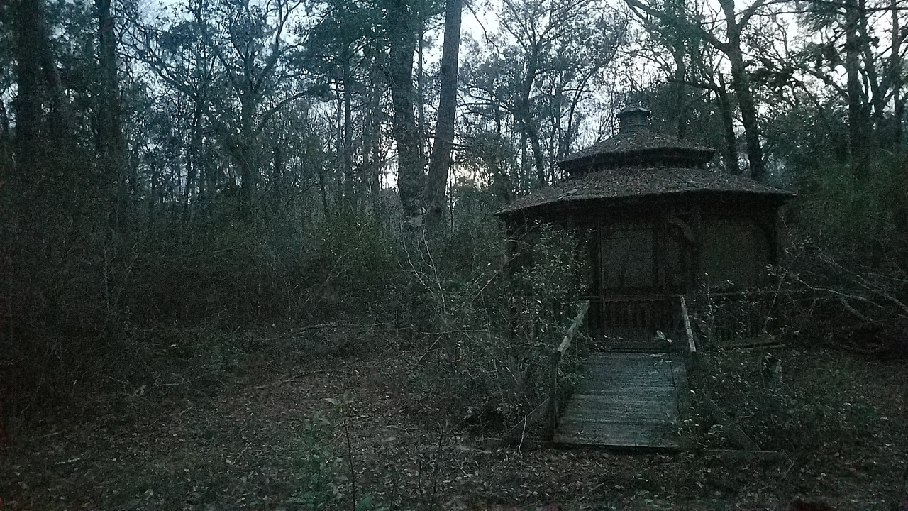 1280x720 in the Woods, Little House, in Pond with dogs at dusk, by John S. Quarterman, for OkraParadiseFarms.com, 22 January 2018