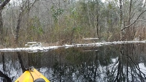 Movie: Icy beaver dam (20M), Between dams