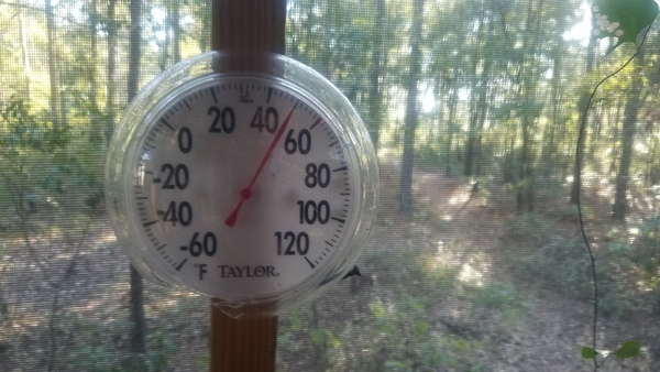 Fall has fallen, Thermometer