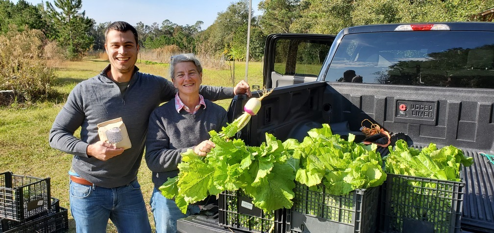 1008x477 Grits and mustard greens, Produce, in Greens and grits for 401 West Restaurant, by John S. Quarterman, for OkraParadiseFarms.com, 22 November 2019