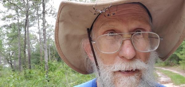 [Orb weaver spider on hat]